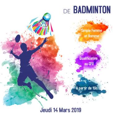 Championnat de Conférence IDF de BADMINTON SIMPLES DAMES ET HOMMES